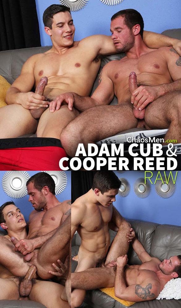 ChaosMen: Cooper Reed rides Adam Cub's thick cock bareback