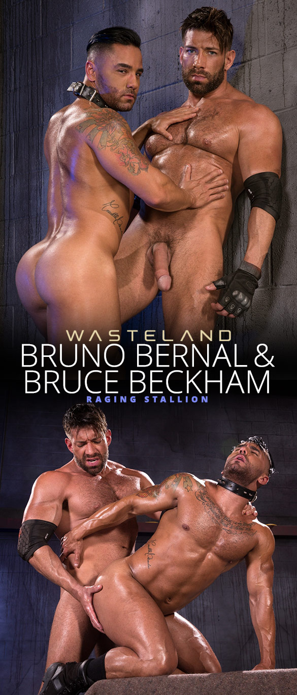 "Raging Stallion: Bruce Beckham slams Bruno Bernal in ""Wasteland"""