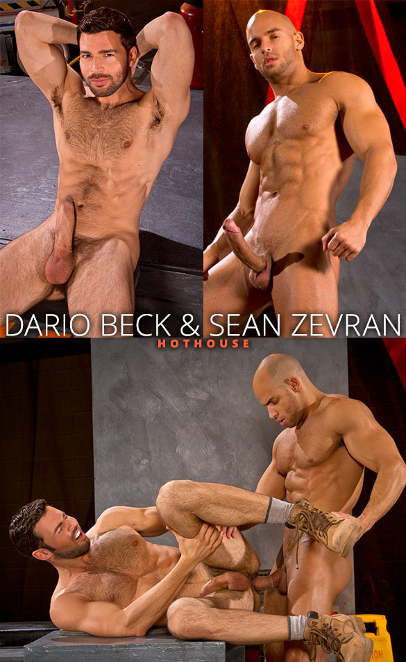 HotHouse: Dario Beck gets pounded by Sean Zevran