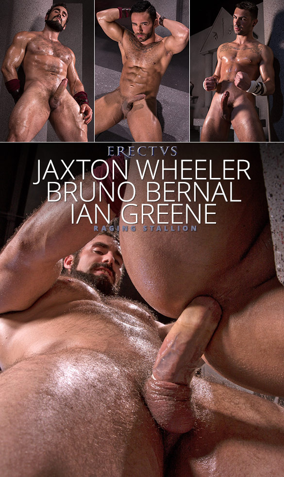 "Raging Stallion: Jaxton Wheeler pounds Bruno Bernal and Ian Greene in ""Erectus"""