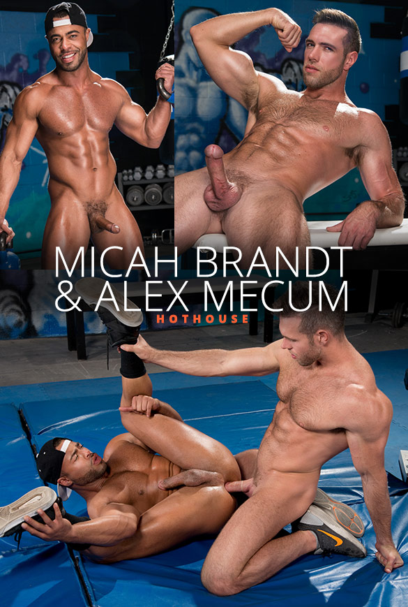 "HotHouse: Alex Mecum pounds Micah Brandt in ""The Trainer: No Excuses"""