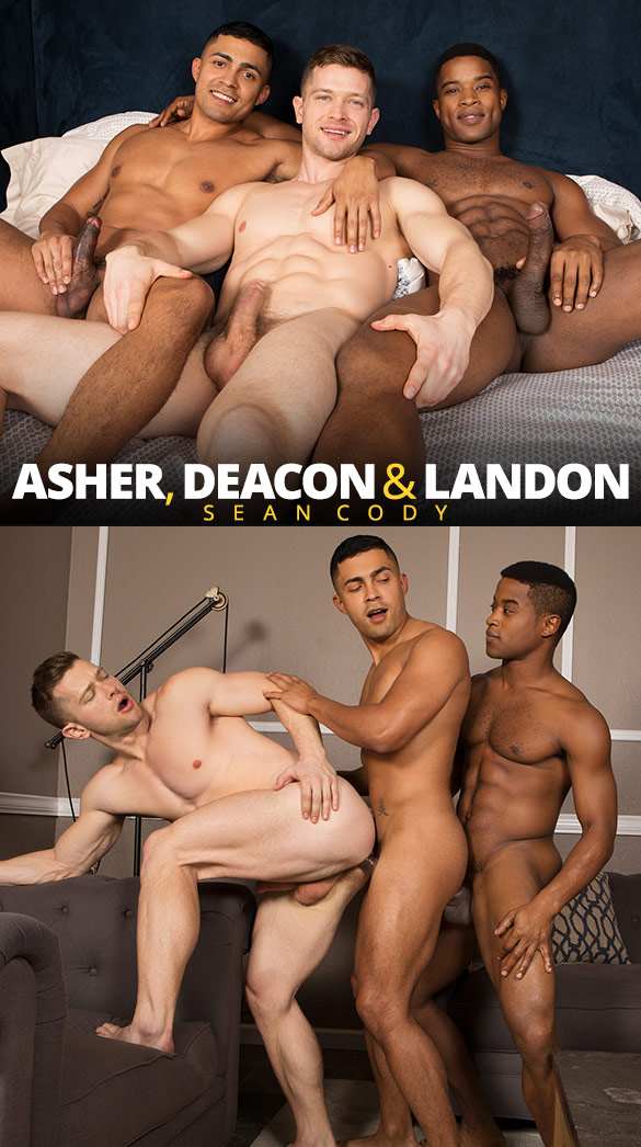 Sean Cody: Asher, Deacon and Landon's raw threeway