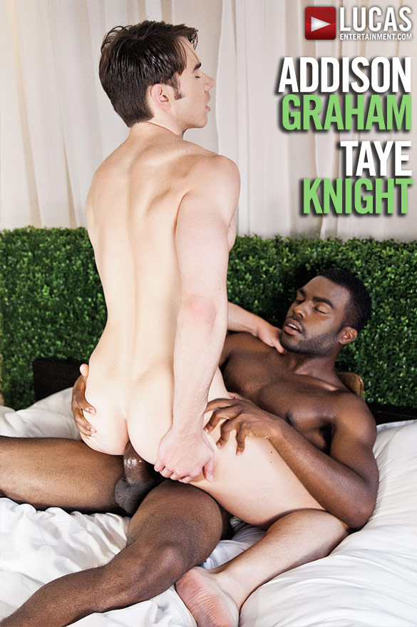 Lucas Entertainment: Addison Graham rides Taye Knight's thick cock bareback