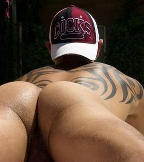 butt208